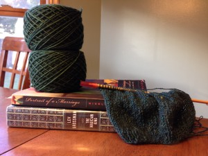 Books + yarn = happy!