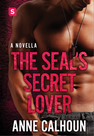Secret lovers are one of my favorite tropes - and this one also features and best friend's sister element. Keep this on the hush-hush, okay?